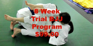8 Week BJJ Intro Classes For $99!!