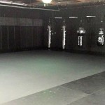 black-House-MMA-3